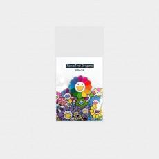 Flower Pins Rainbow & White